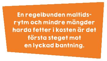 Övervikt_pic